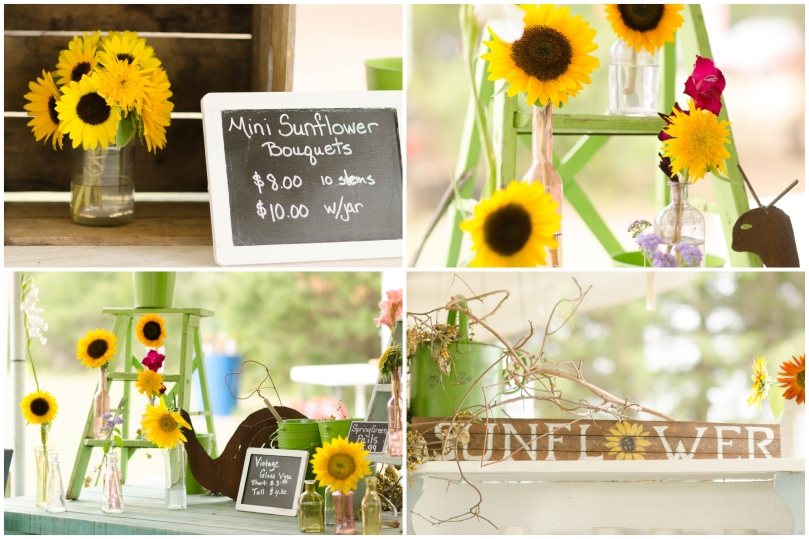 Alexandra Michelle Photography- Burnside Sunflower Farm-18