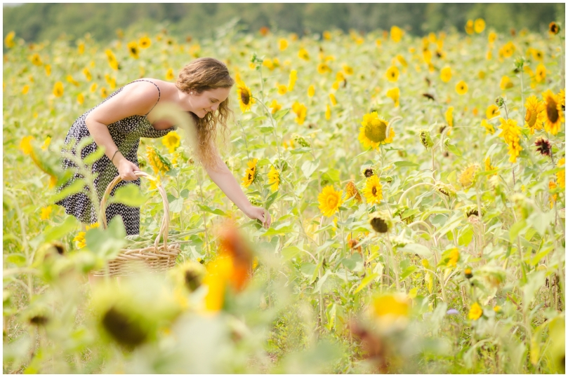 Alexandra Michelle Photography- Burnside Sunflower Farm-74