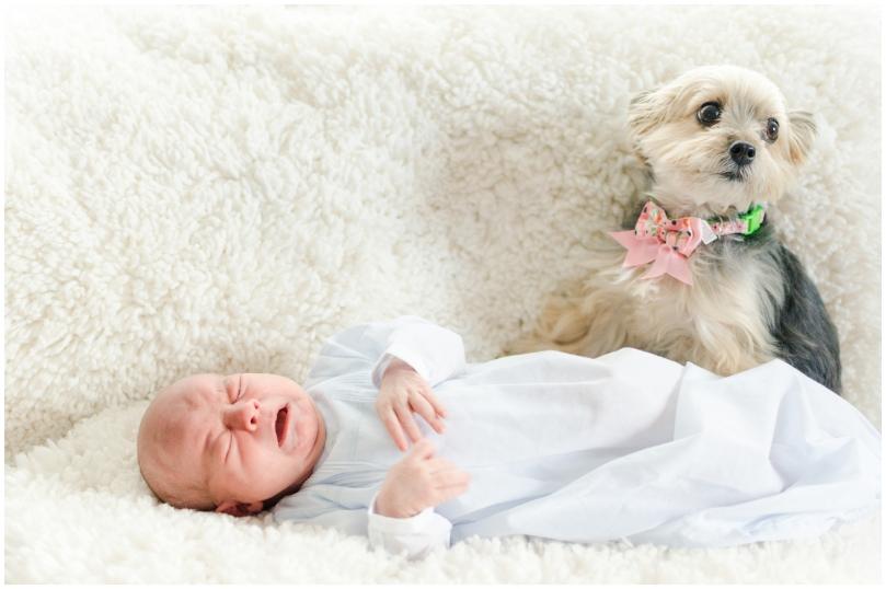 Alexandra Michelle Photography - Richmond Newborn - Brown-2