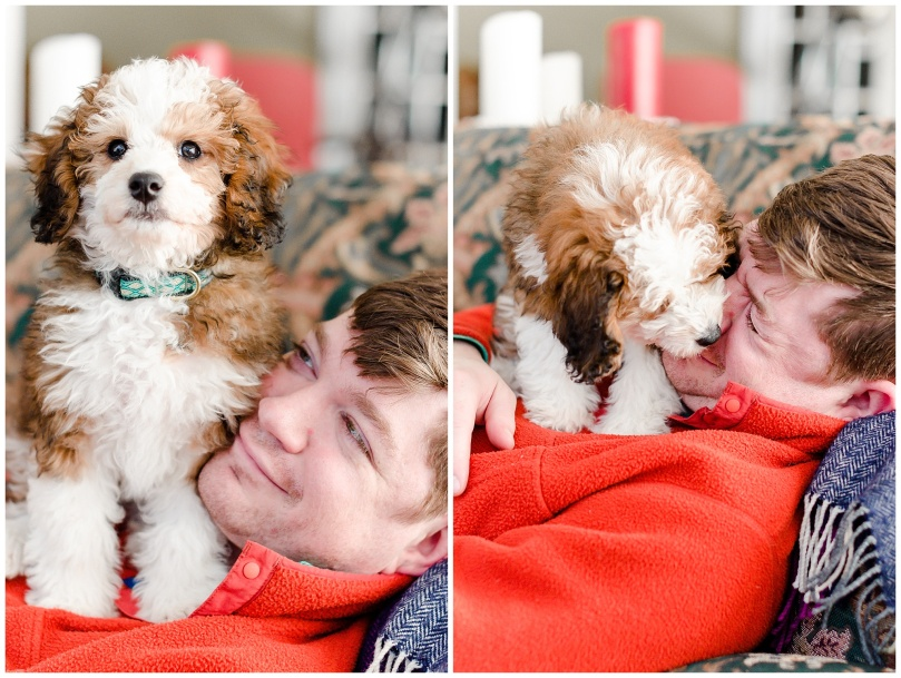 Alexandra Michelle Photography - Lucy the Bernadoodle-14