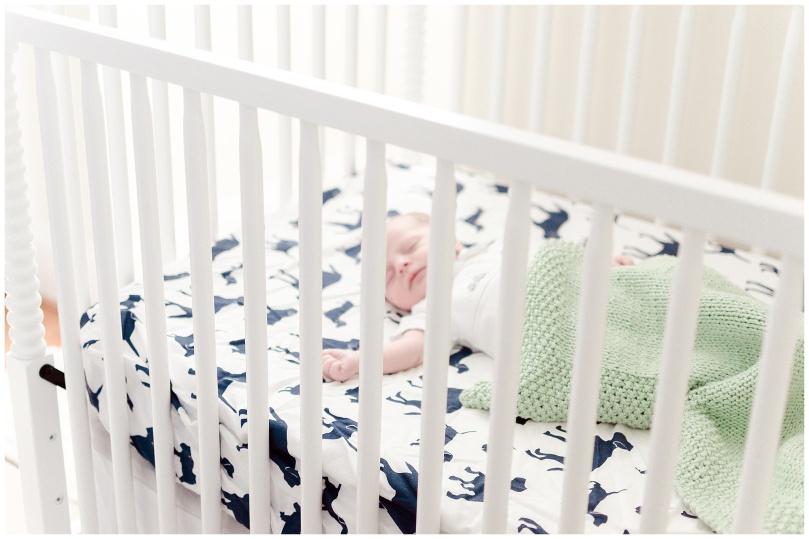 Alexandra-Michelle-Photography- Newborn - Richmond Virginia - Rennolds-38