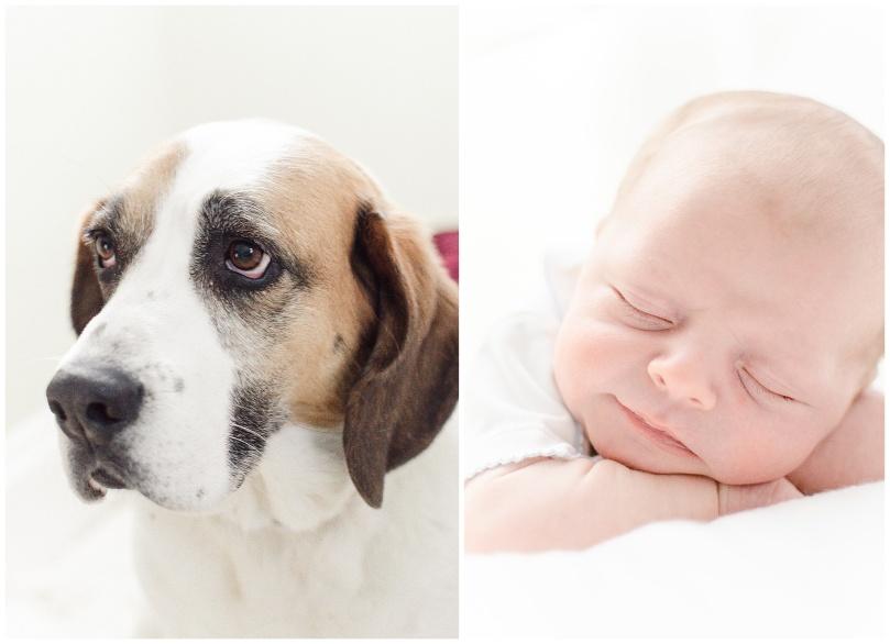 Alexandra-Michelle-Photography- Newborn - Richmond Virginia - Rennolds-82